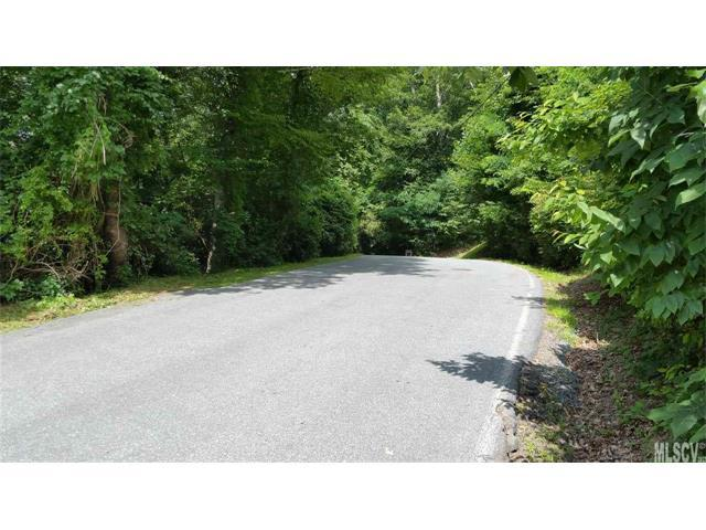 Lots 8-9 Hillandale Drive 8 & 9, Boone, NC 28607 (#9597187) :: Mossy Oak Properties Land and Luxury