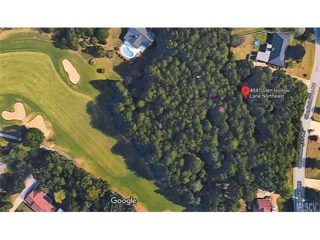 4841 Glen Hollow Lane NE, Hickory, NC 28601 (#9597285) :: Mossy Oak Properties Land and Luxury