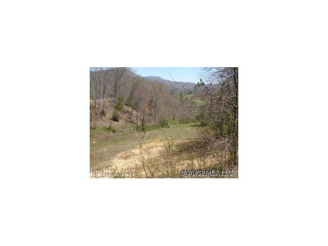 Lot #2 Harleys Cove Rd Road #2, Waynesville, NC 28785 (#NCM410634) :: Rinehart Realty
