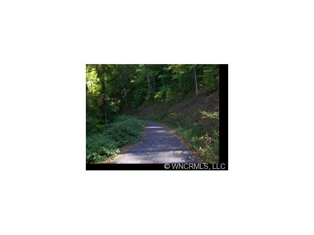 Lot 139 + Ramp Patch Lane 139 +, Waynesville, NC 28786 (#NCM423936) :: The Elite Group