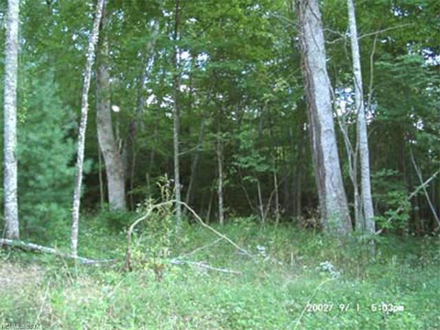 Lot 5 Happy Hollow Road #5, Clyde, NC 28721 (#NCM445764) :: Rinehart Realty
