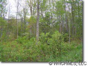 Lot 9 Hare Hollow Road #9, Clyde, NC 28721 (#NCM445787) :: Rinehart Realty