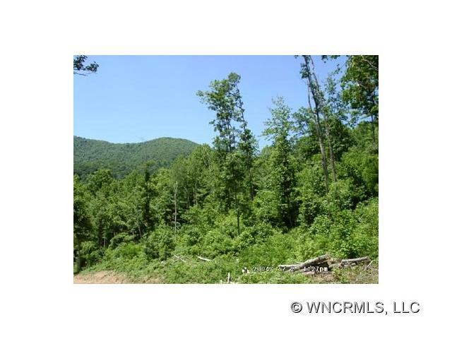Lot 10 Hare Hollow Road #10, Clyde, NC 28721 (#NCM445800) :: Rinehart Realty