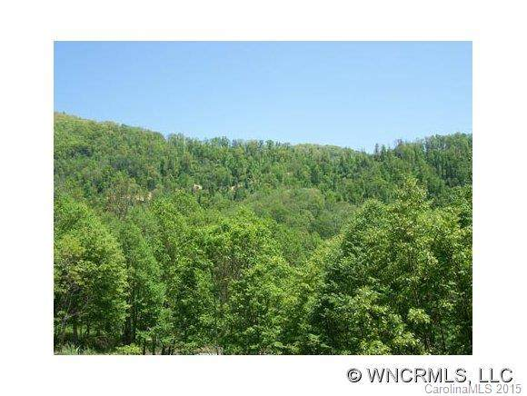 Lot 13 Polk Berry Lane #13, Clyde, NC 28721 (#NCM445807) :: The Mitchell Team