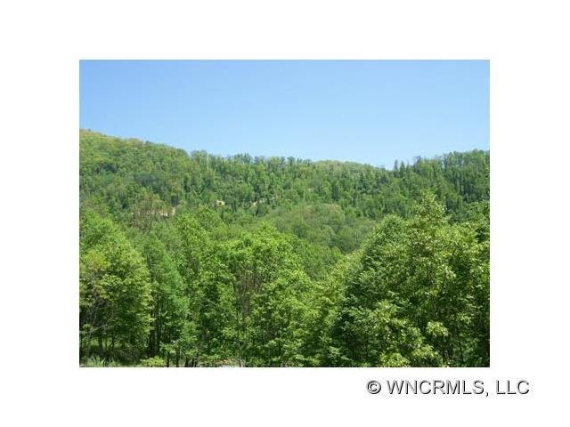 Lot 13 Polk Berry Lane #13, Clyde, NC 28721 (#NCM445807) :: Rinehart Realty