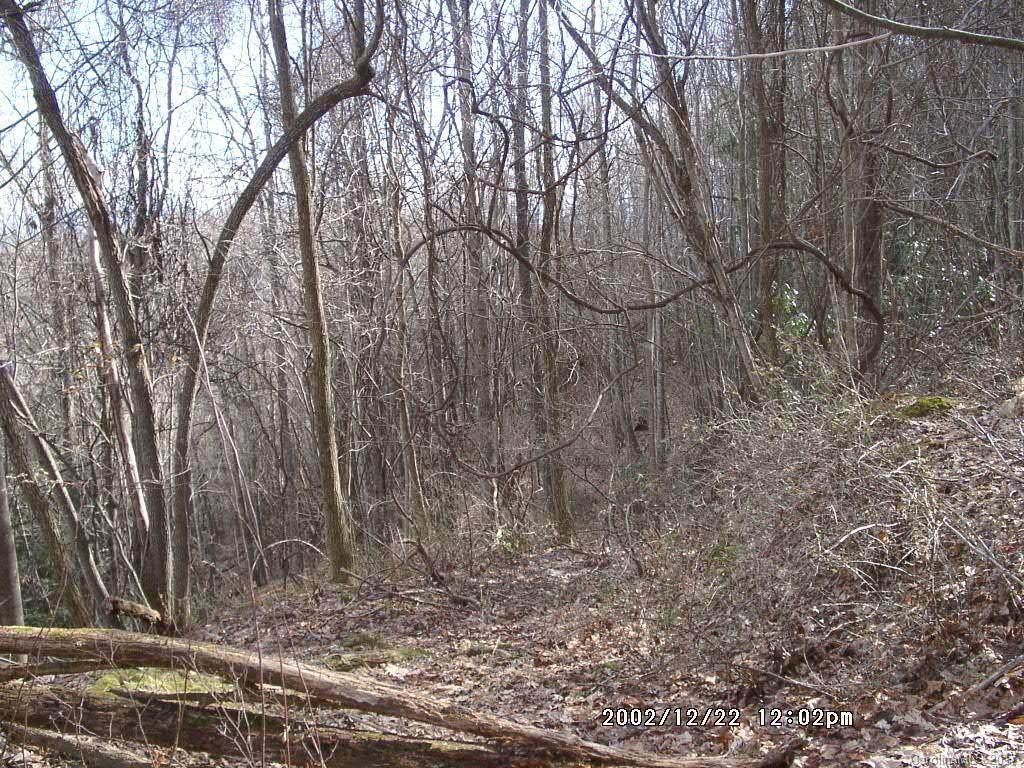 25 Running Deer Lane - Photo 1