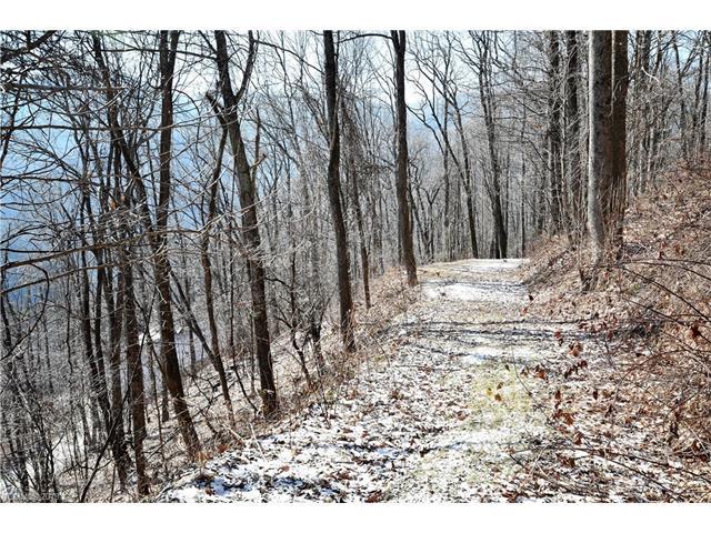 40 Dorchester Road #40, Waynesville, NC 28785 (#NCM457228) :: Exit Mountain Realty