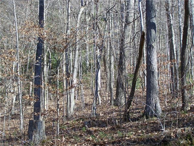 Lot 99 Whispering Woods Path - Photo 1