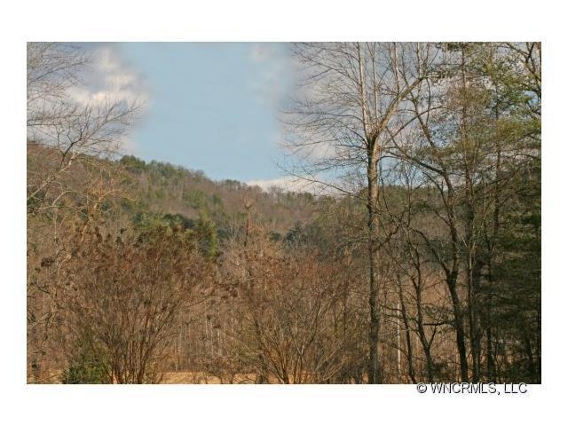 Lot 64 Cedar Creek Road #64, Lake Lure, NC 28746 (#NCM481648) :: Washburn Real Estate