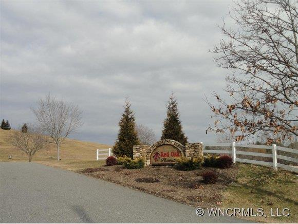 520 Sky Ridge Drive #55, Leicester, NC 28748 (#NCM511712) :: Keller Williams South Park