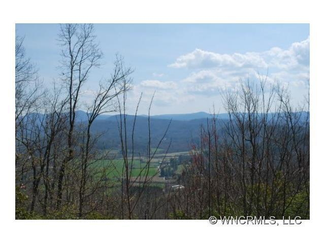 19 Hawkins Hollow Road #19, Pisgah Forest, NC 28768 (#NCM514866) :: RE/MAX Four Seasons Realty