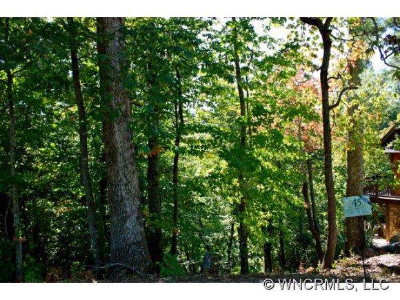 10 Whitman Lane #41, Black Mountain, NC 28711 (#NCM525603) :: High Performance Real Estate Advisors