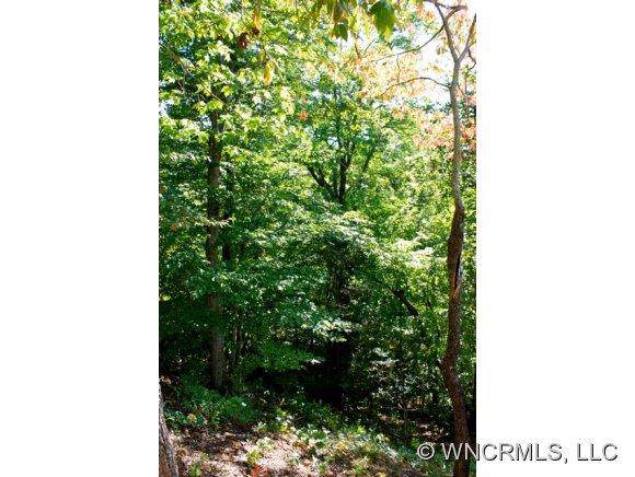 8 Whitman Lane #42, Black Mountain, NC 28711 (#NCM525605) :: Puma & Associates Realty Inc.
