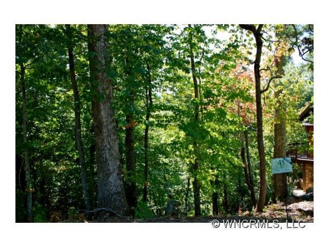 2 Whitman Lane #45, Black Mountain, NC 28711 (#NCM526153) :: Cloninger Properties
