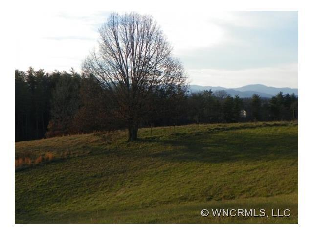 64 Gracie Lane #21, Weaverville, NC 28787 (#NCM530437) :: Puffer Properties