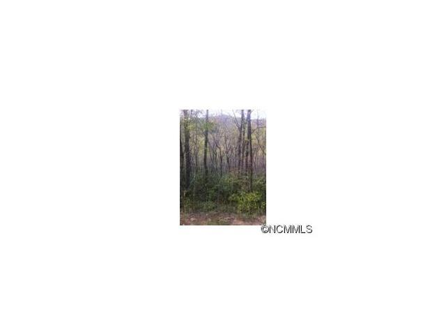 lot 487 Maryland Place Place, Montreat, NC 28757 (#NCM537775) :: Rinehart Realty