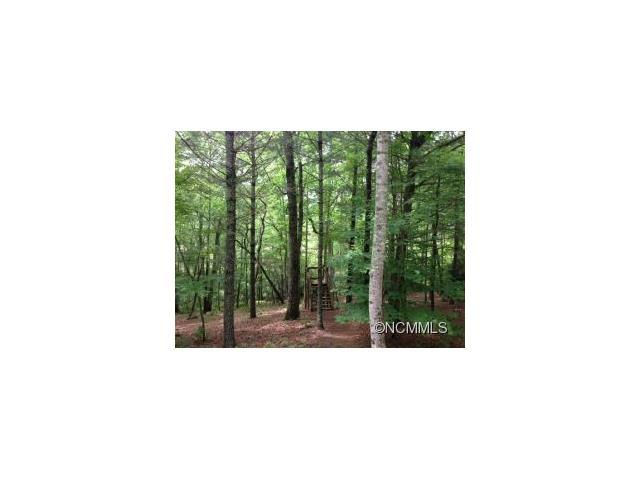 44 Hidden Hill Way 24A, Arden, NC 28704 (#NCM538754) :: Miller Realty Group