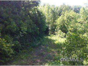 00 White Pine Lane Lane - Photo 1