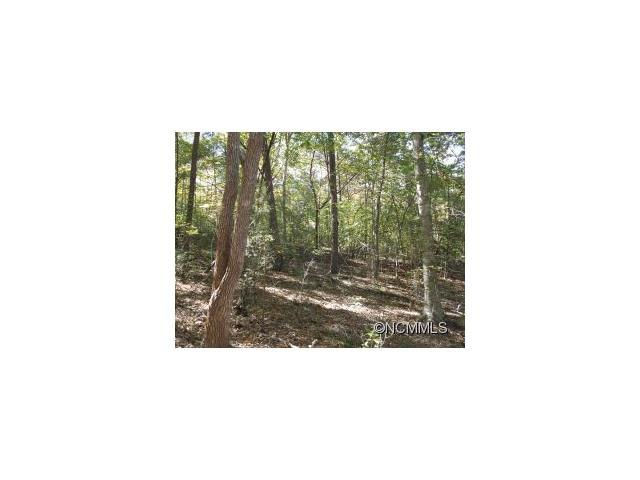45 Bent Tree Drive, Rutherfordton, NC 28139 (#NCM550086) :: Exit Mountain Realty