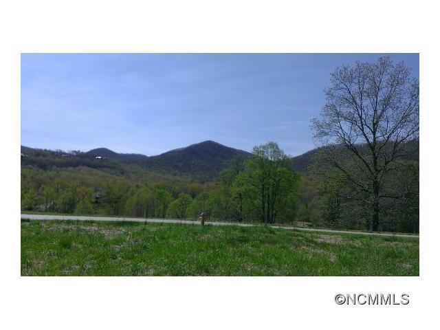 33 Rain Lily Trail L8s7, Arden, NC 28704 (#NCM552440) :: Burton Real Estate Group