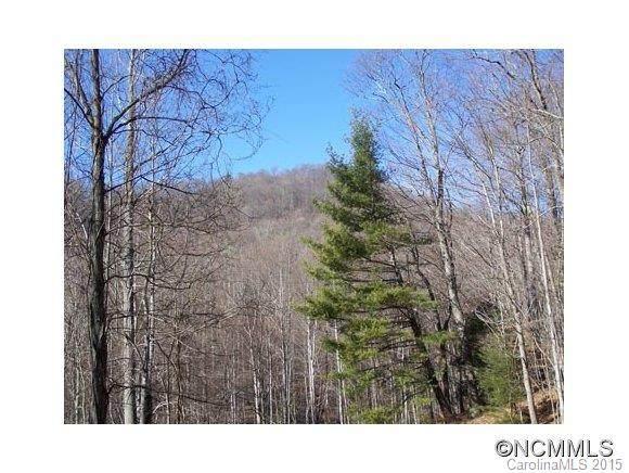 Lot 100 Whispering Woods Path - Photo 1
