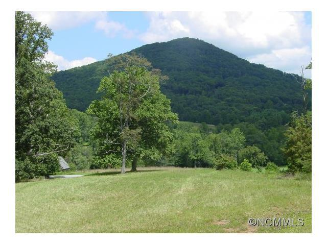 470 Walnut Valley Parkway Lot 92, Arden, NC 28704 (#NCM556262) :: Miller Realty Group