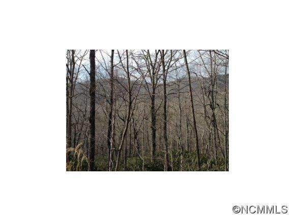 000 Maryland Place Road, Montreat, NC 28757 (#NCM556703) :: Ann Rudd Group