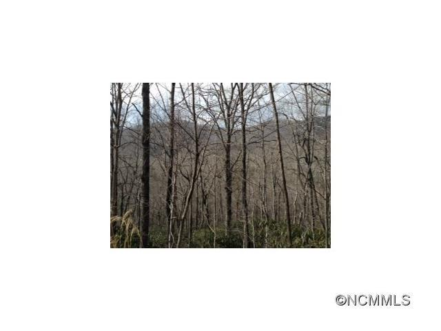 000 Maryland Place, Montreat, NC 28757 (#NCM556703) :: LePage Johnson Realty Group, LLC