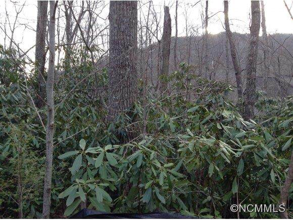 663 lot Kentucky Road, Montreat, NC 28757 (#NCM559127) :: The Premier Team at RE/MAX Executive Realty