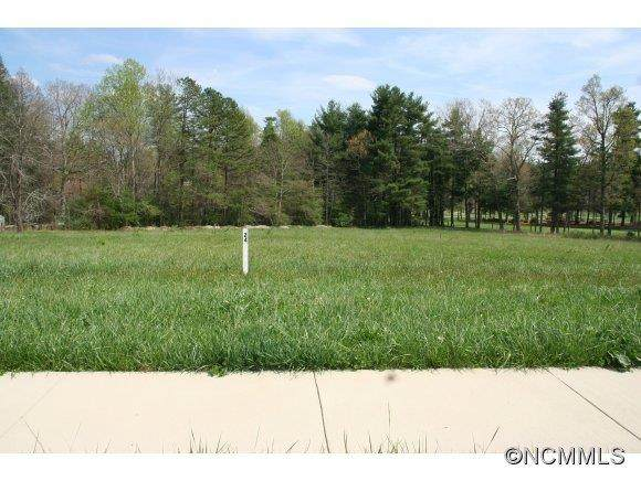 Lot # 24 Berwick Downs Drive, Flat Rock, NC 28731 (#NCM559414) :: Cloninger Properties