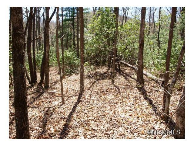 18 Mountain Vista Lane #18, Rosman, NC 28772 (#NCM560312) :: Rinehart Realty