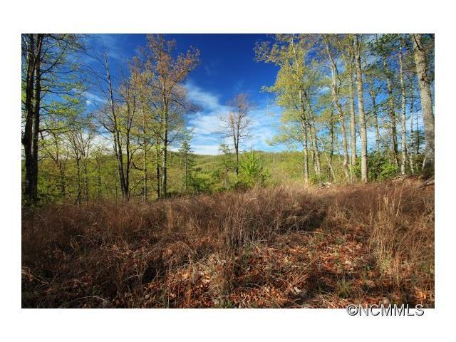 10 Red Maple Lane #10, Pisgah Forest, NC 28768 (#NCM561287) :: Odell Realty