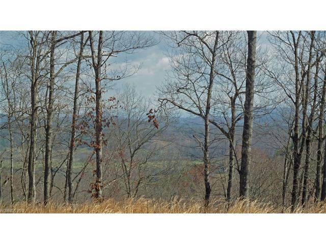 32 Wild Iris Road #32, Brevard, NC 28712 (#NCM563598) :: Caulder Realty and Land Co.