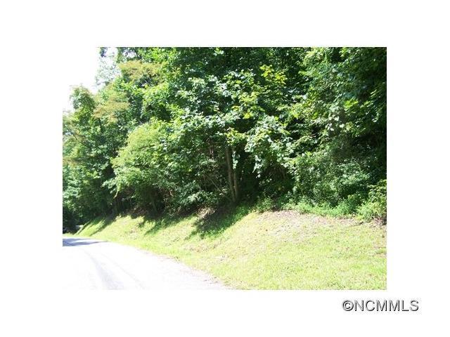 Lot 275 Eagles Nest Road #275, Waynesville, NC 28786 (#NCM568058) :: Mossy Oak Properties Land and Luxury