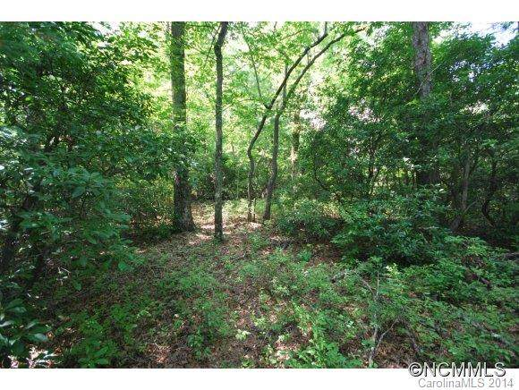 6 Hollydale 6 Cottage Secti, Pisgah Forest, NC 28768 (#NCM568562) :: Johnson Property Group - Keller Williams