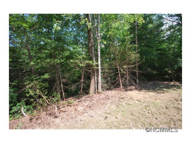 9 Ferndale #9, Pisgah Forest, NC 28768 (#NCM568627) :: The Premier Team at RE/MAX Executive Realty
