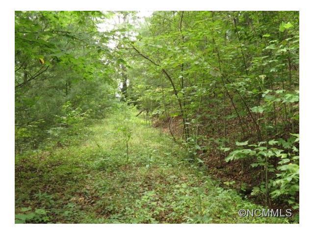 Lot 3, Gardner Lane, Pisgah Forest, NC 28768 (#NCM569047) :: LePage Johnson Realty Group, LLC