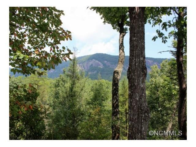 LOT 17 Mintwood Court #17, Lake Lure, NC 28746 (#NCM569101) :: Puffer Properties