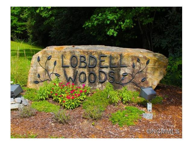 Lot 28 Fern Cove Lane #28, Pisgah Forest, NC 28768 (#NCM570484) :: Roby Realty