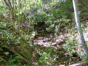 Lot 1 Mountain Watch Drive #1, Waynesville, NC 28785 (#NCM571007) :: Ann Rudd Group