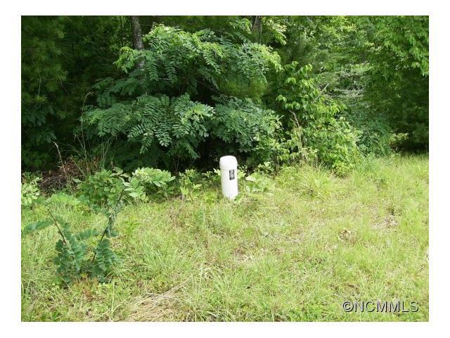 tbd Terrace Drive, Weaverville, NC 28787 (#NCM571049) :: Exit Realty Vistas