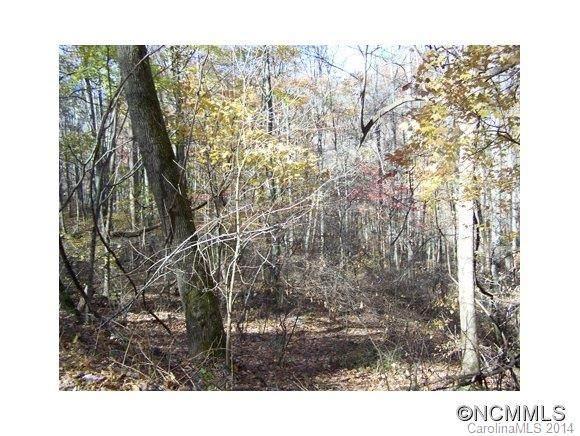 Lot 48 Whispering Woods Path #48, Mars Hill, NC 28754 (#NCM573701) :: Premier Realty NC