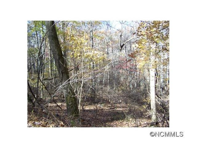 Lot 48 Whispering Woods Path #48, Mars Hill, NC 28754 (#NCM573701) :: Team Honeycutt