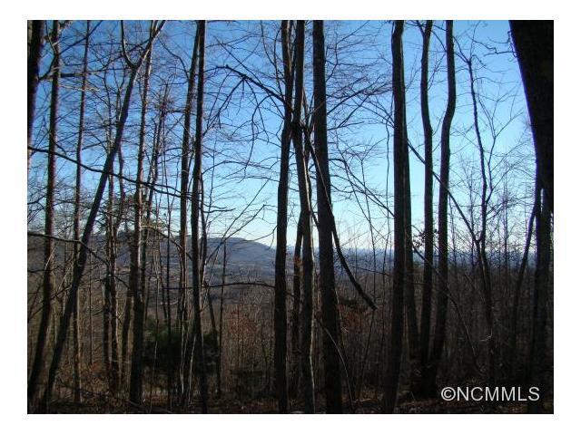 89 Adirondack Lane, Bostic, NC 28018 (#NCM576237) :: Stephen Cooley Real Estate Group