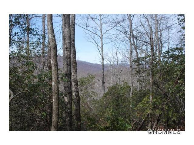 Lot 1 Hollydale #1, Pisgah Forest, NC 28768 (#NCM577266) :: Mossy Oak Properties Land and Luxury
