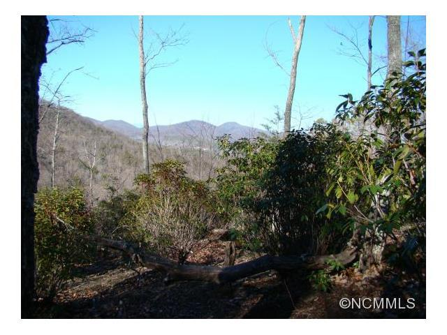 34 Mountain Lookout Drive, Bostic, NC 28018 (#NCM577360) :: High Performance Real Estate Advisors