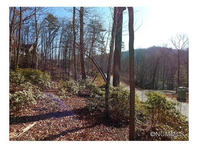 35 Fern Cove Lane, Pisgah Forest, NC 28768 (#NCM577772) :: Roby Realty
