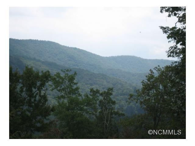 LOT 116 Mayfly Lane, Mills River, NC 28759 (#NCM578908) :: Exit Realty Vistas