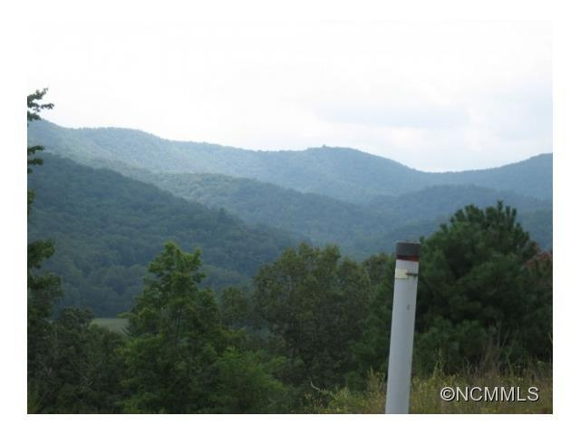 LOT 134 Watershed Way #134, Mills River, NC 28759 (#NCM578912) :: Exit Realty Vistas