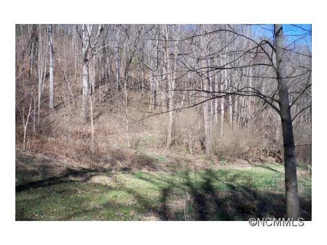 Lt 45/46 Turn-A-Bout Ct Court 45/46, Waynesville, NC 28785 (#NCM580917) :: Puffer Properties